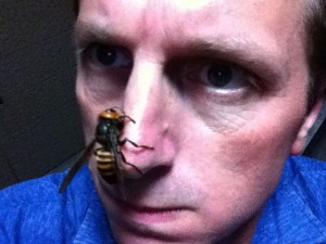 Drunken wasp attack