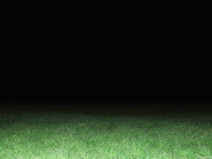 dark-night-on-the-grass